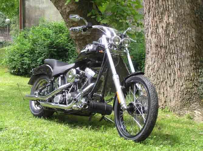 Tomic Custom Bike - Pegasus